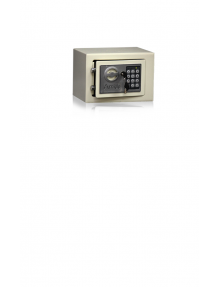 Arride Electronic Safe